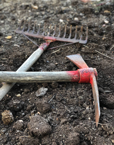 Gardening tools An old pickax and harrow on the ground mattock stock pictures, royalty-free photos & images