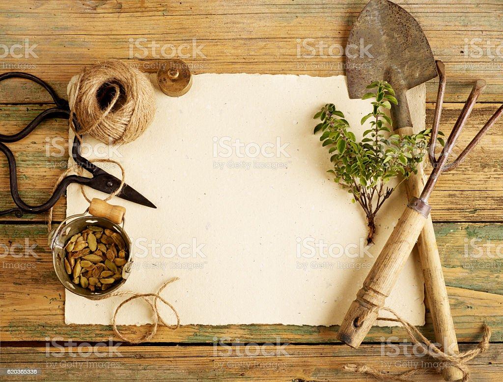 Ogrodnictwo narzędzia  zbiór zdjęć royalty-free