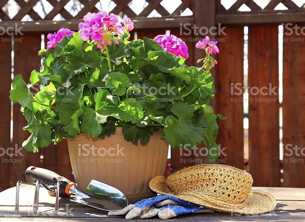 Gärtnern-tools - Lizenzfrei Blume Stock-Foto