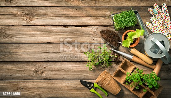istock Gardening tools, seeds and soil on wooden table 673641858