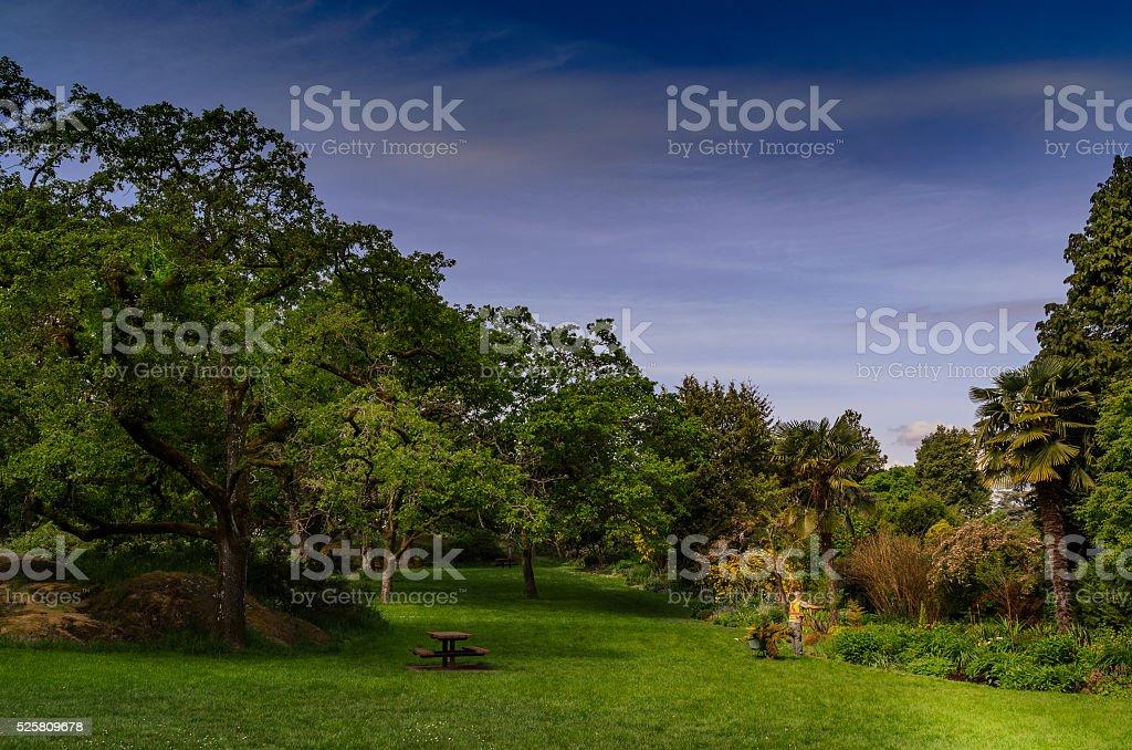 Gardening Victoria Park BC stock photo