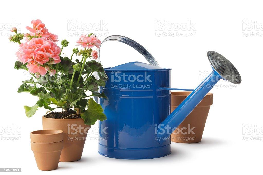 Garten: Gießkanne, Plant Töpfen und Geranie – Foto