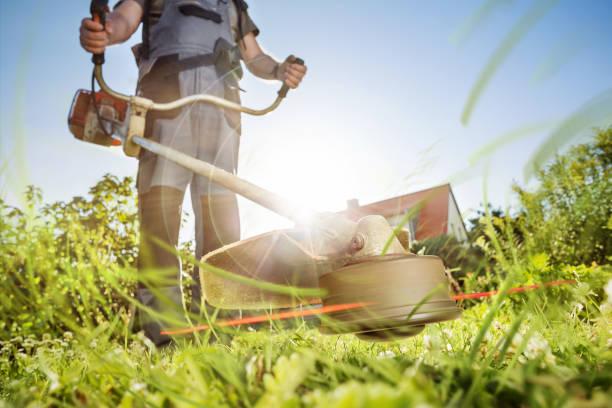 Gartenarbeit mit einer Motorsense – Foto