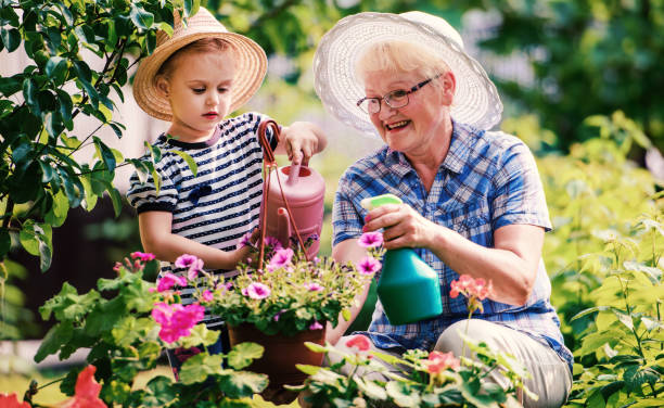 Gartenarbeit mit Kindern. Seniorenfrau und ihr Enkelkind arbeiten im Garten mit einer Pflanze. Hobbys und Freizeit, Lifestyle, Familienleben – Foto