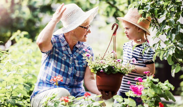 Gardening with kids. Senior woman and her grandchild working in the garden with a plants. Hobbies and leisure, lifestyle, family life stock photo