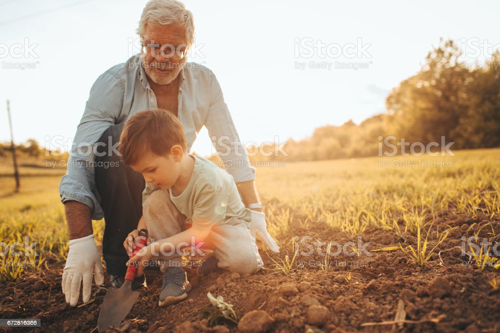 Gardening with my grandson - fotografia de stock