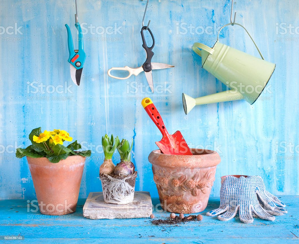 gardening with spring flowers and gardening tools stock photo
