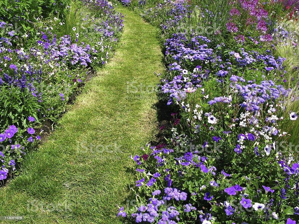 Garden-path between flowerbeds stock photo