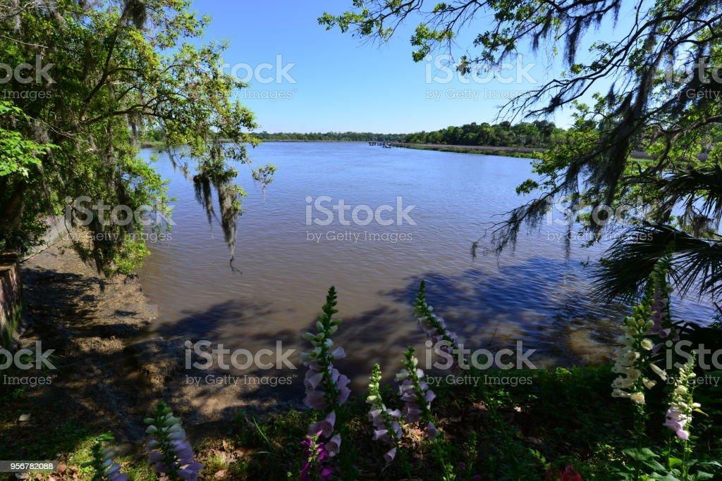 Gardens and a lake at an old Plantation in South Carolina stock photo
