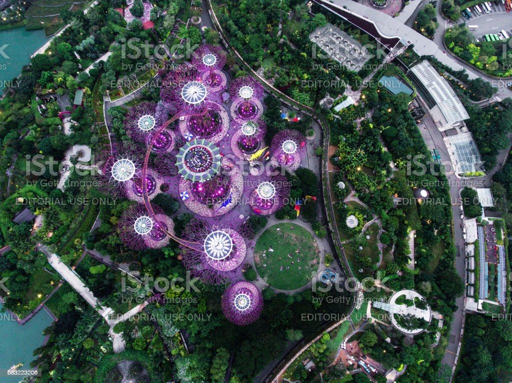 新加坡灣花園 免版稅 stock photo