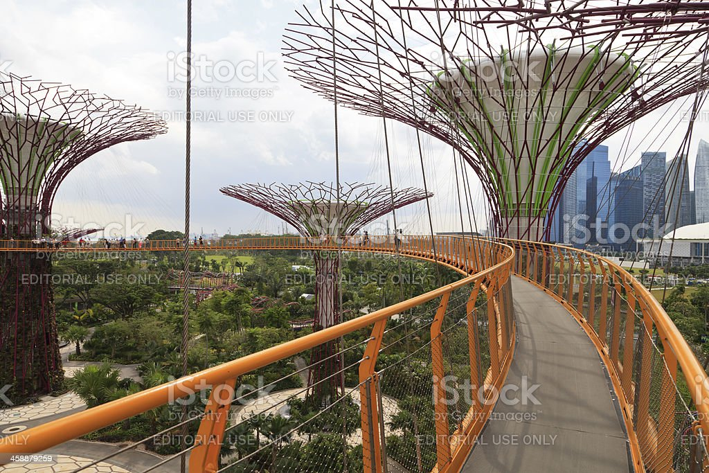 Gardens by the bay, Singapore royalty-free stock photo