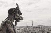 Gargoyle and wide city view from the roof of Notre Dame de Paris, France
