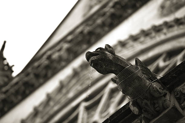 gargoyle at leon cathedral - demoniac stock pictures, royalty-free photos & images