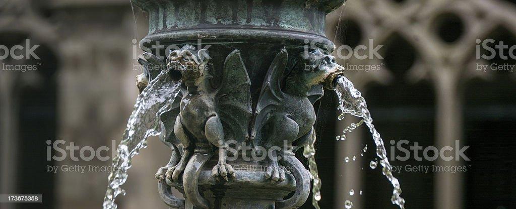 Gargoyle fountain Gothic Dom Church Utrecht 5 stock photo