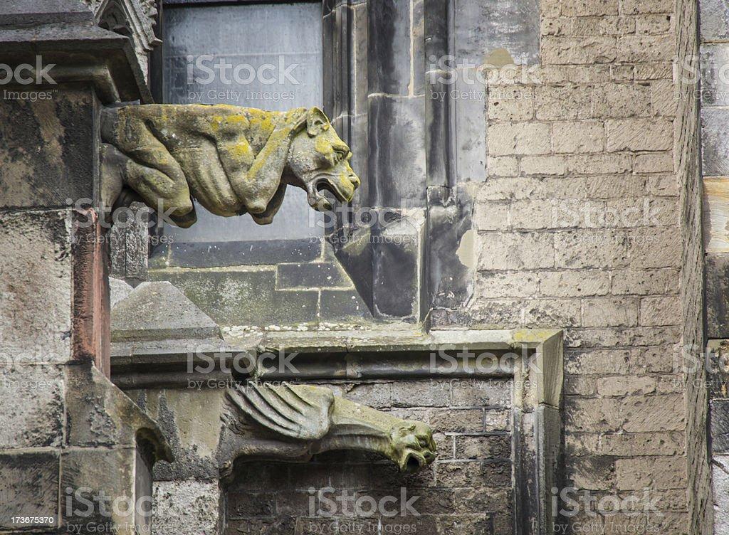 Gargoyle Gothic Dom Church Utrecht 7 stock photo