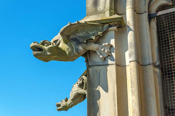gargoyle on Ulm Munster church gargoyle on Ulm Munster church ulm minster stock pictures, royalty-free photos & images