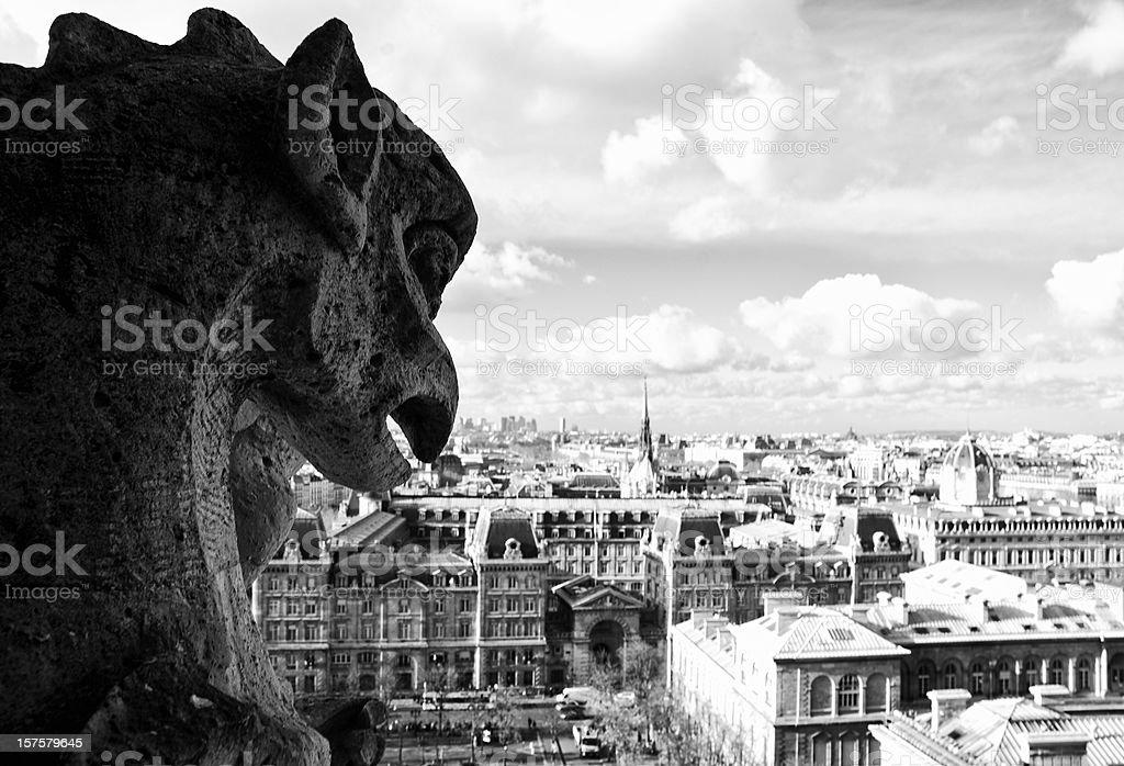 Gargoyle Paris Notre Dame royalty-free stock photo