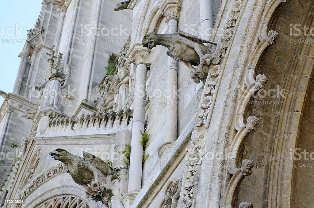 Gargoyles on the Cathedral of Amiens. stock photo