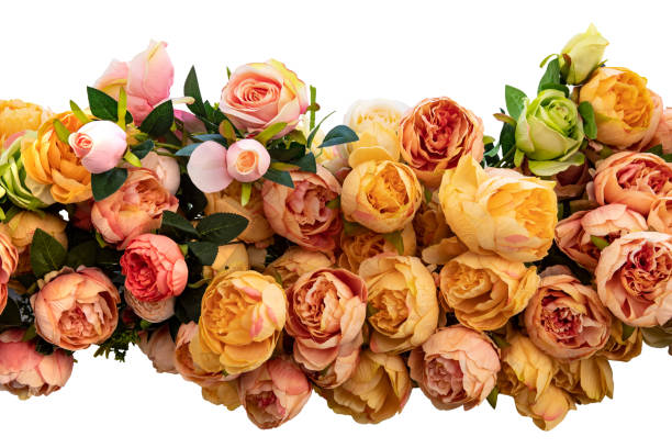 Garland of roses isolated decorative garland of colorful artifical picture id1155719746?b=1&k=6&m=1155719746&s=612x612&w=0&h=p6nhp556k3m1 beeak10chtigufuvxhvz mxo4v5v28=