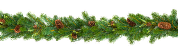 garland with green fir branches and cones isolated on white - floral garland stock pictures, royalty-free photos & images
