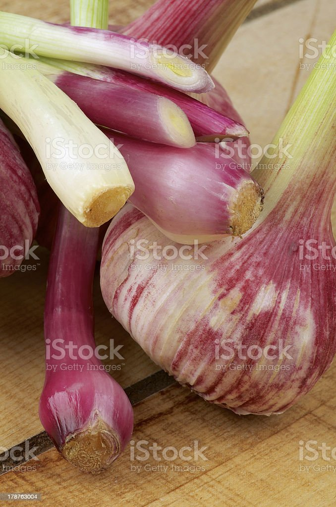 Garlic and Onion royalty-free stock photo