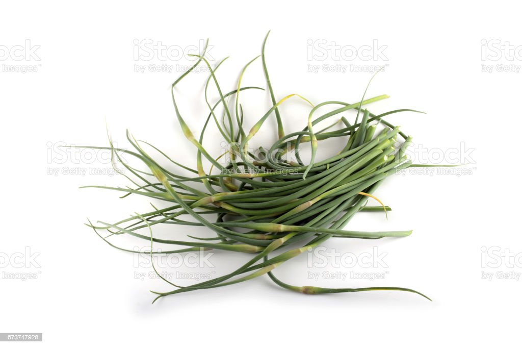 Garlic arrows royalty-free stock photo