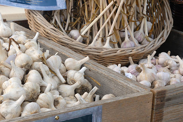garlic at farmers market
