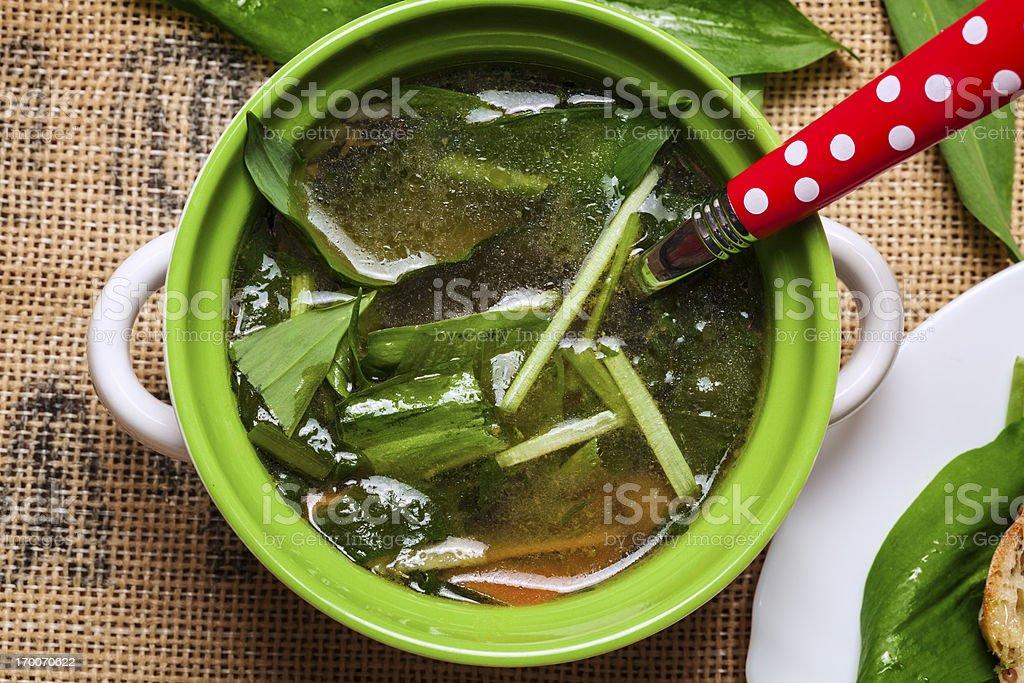 Garlic bear Soup royalty-free stock photo