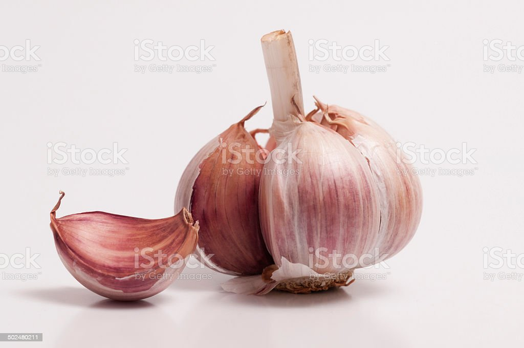 Garlic Bulb and a Individual Clove stock photo