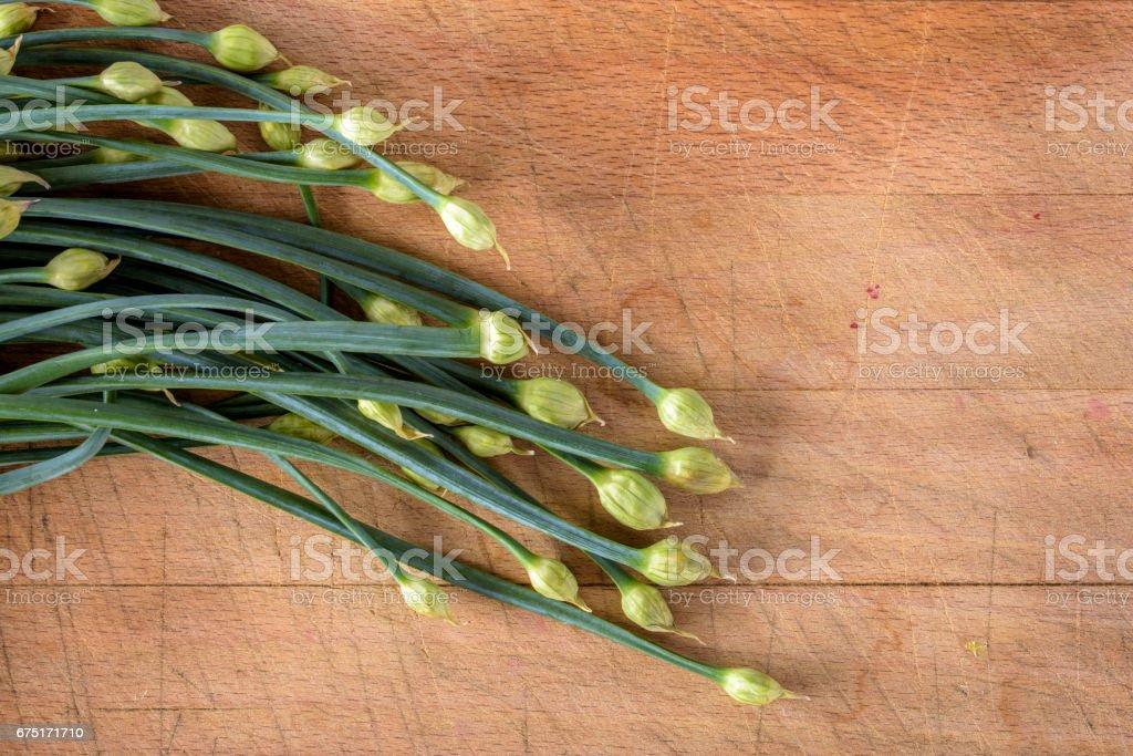 Garlic Chives Flower stock photo