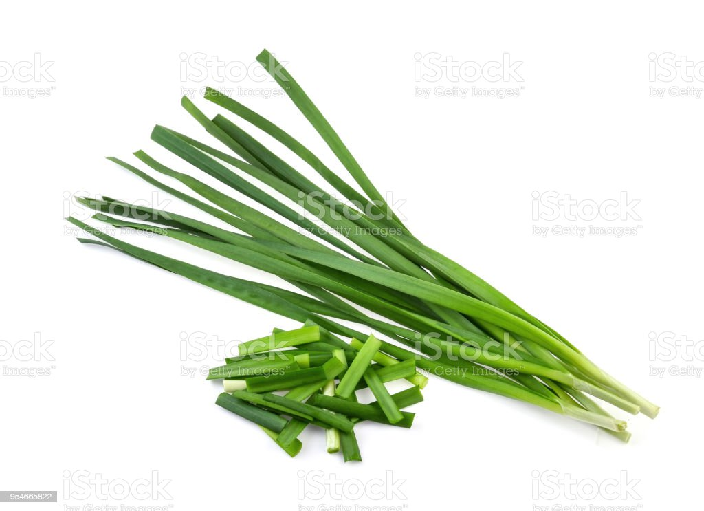 Garlic chives isolaed on white background stock photo