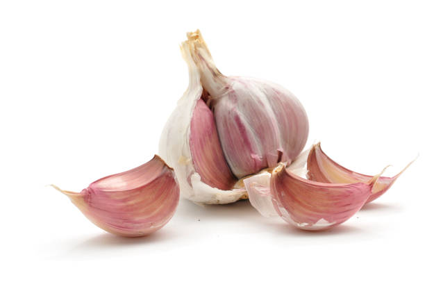 garlic cloves and bulb - garlic stock photos and pictures