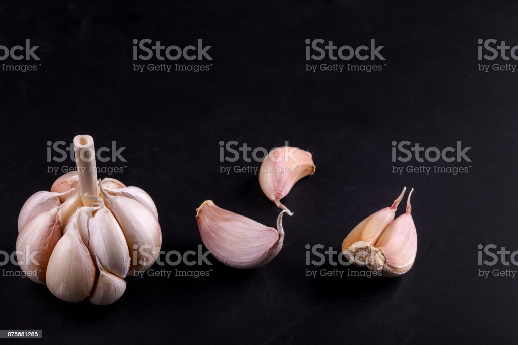 garlic head stock photo
