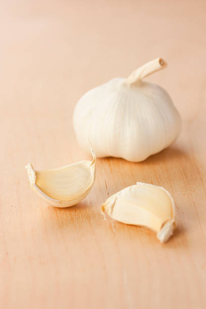 garlic head with two gloves stock photo