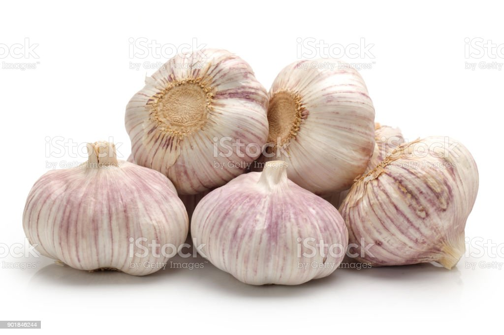 Garlic  on a white background stock photo