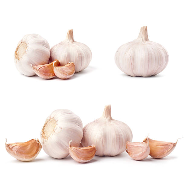 Garlic set isolated on white background stock photo