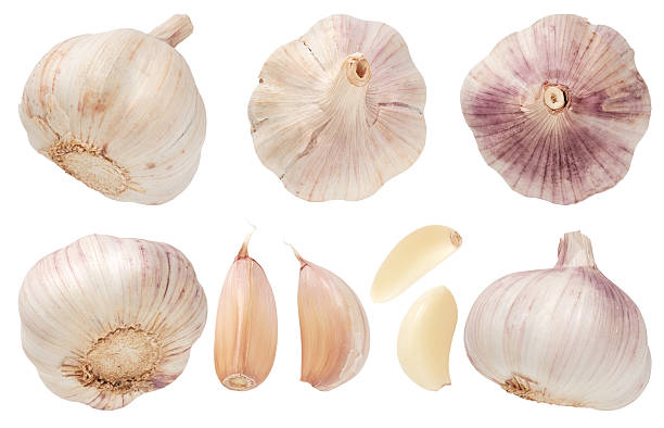 garlic set isolated on white background. top view. - garlic stock photos and pictures