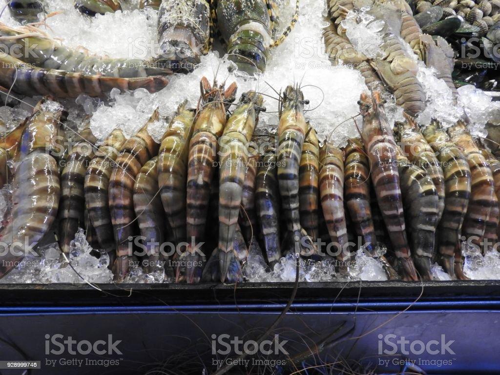 Garnelen Hummer Krebse Muscheln Und Tintenfisch Auf Einem Thaimarkt ...