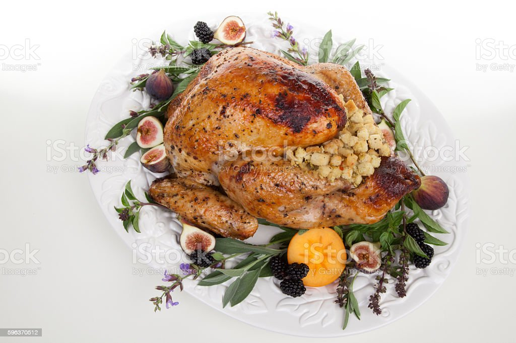 Garnished turkey on serving tray stock photo