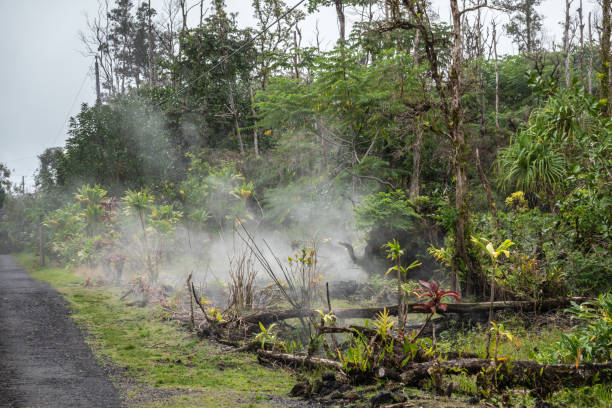 Gases and vapors escape from cracks in forest floor, Leilani Estate, Hawaii, USA. stock photo