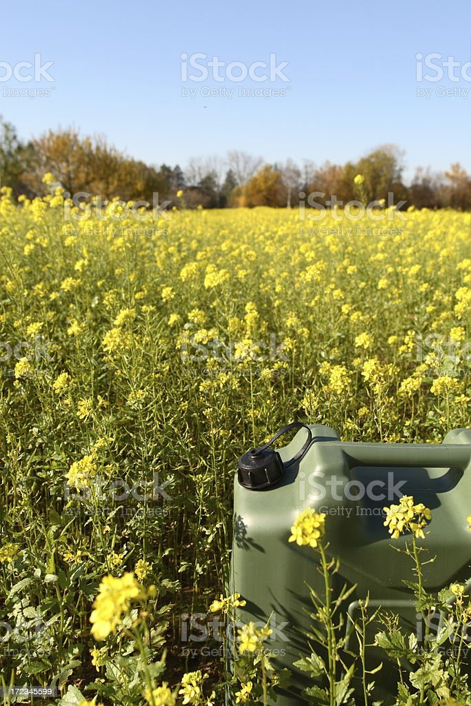 Gasoline Tank in Rapeseed Field royalty-free stock photo