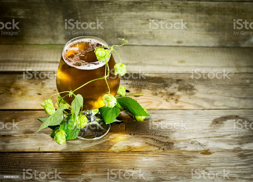 Gass of cold beer with hops Lizenzfreies stock-foto