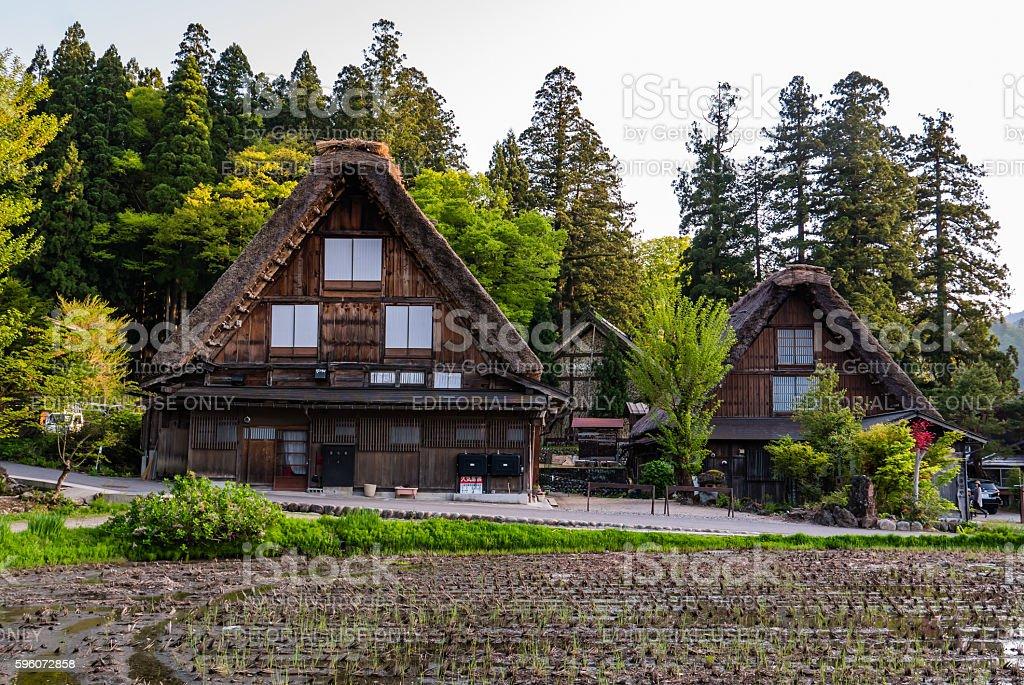 Gassho-zukuri houses in Shirakawa-go royalty-free stock photo