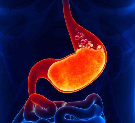 istock Gastric Acid 496261439