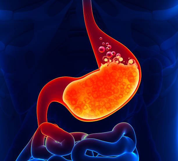 Gastric Acid stock photo
