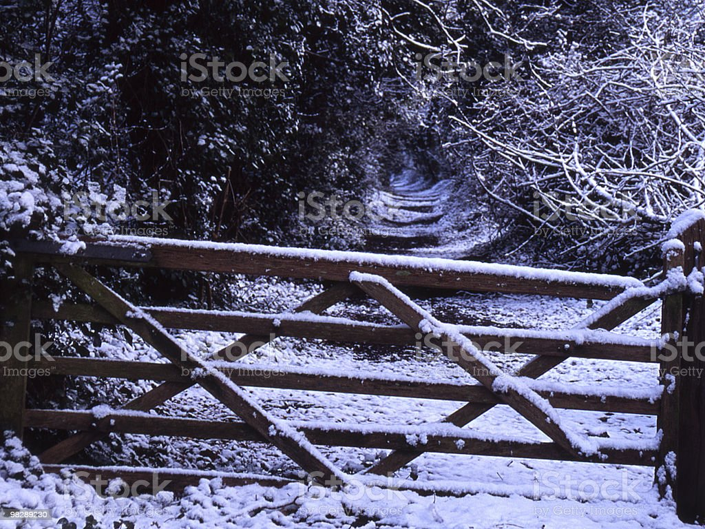 Gate and Lane through woodland in snow royalty-free stock photo