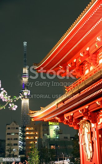 464620985 istock photo Gate and Skytree 655529788
