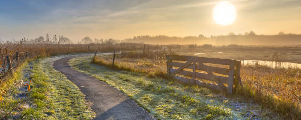 Gate in misty agricultural landscape stock photo