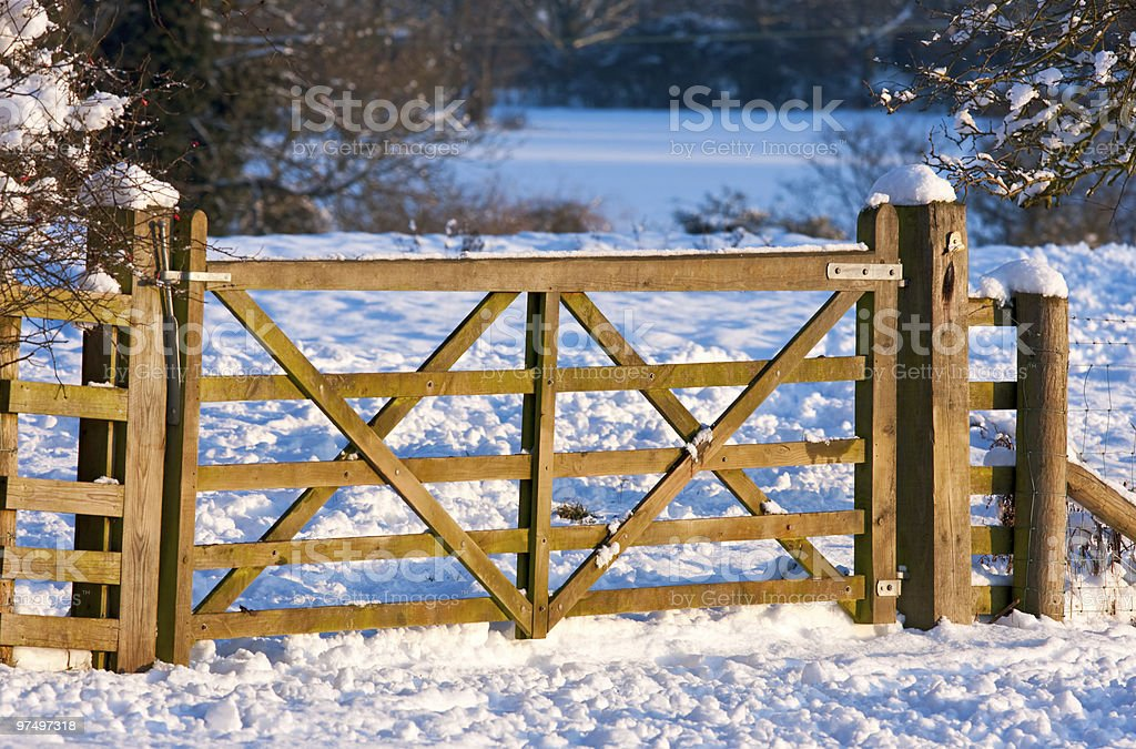 Gate through a snowy field in warm afternoon light royalty-free stock photo