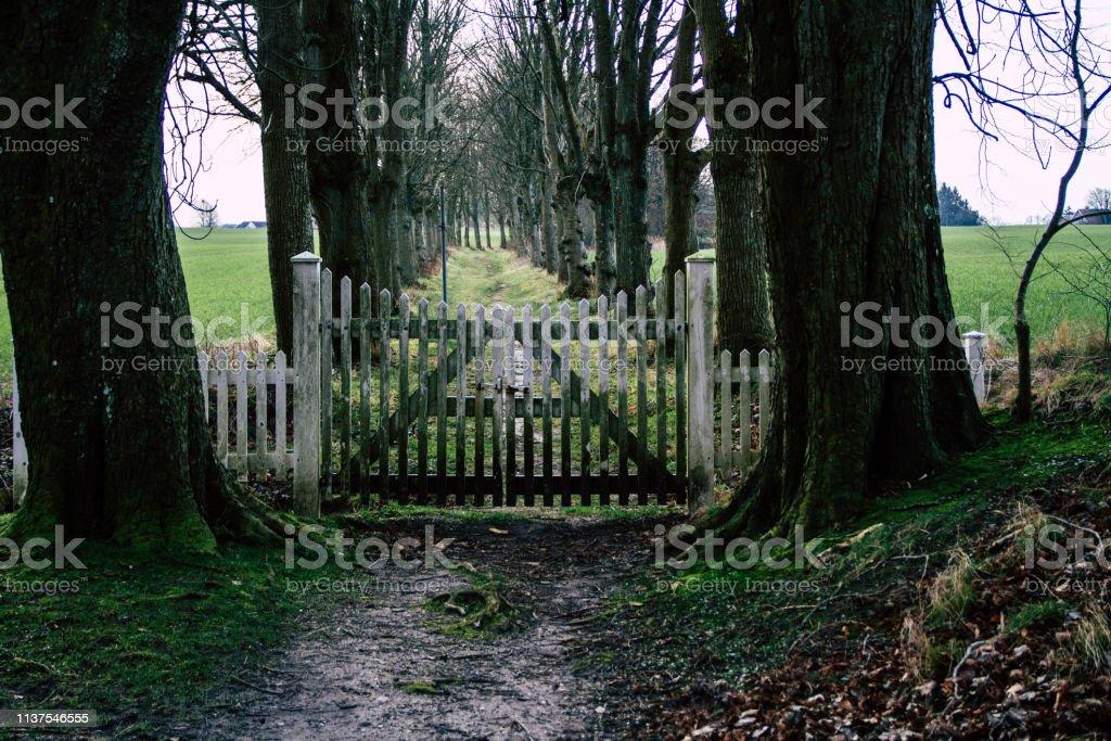Gate to nowhere stock photo